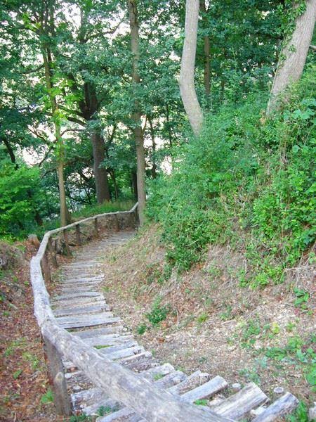 premier emonture escalier